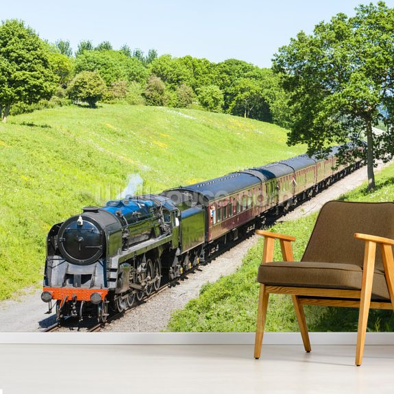Black Steam Train, Gloucestershire Warwickshire Railway wall mural room setting