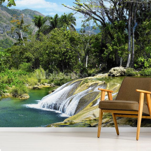 El Nicho Waterfall, Cuba mural wallpaper room setting