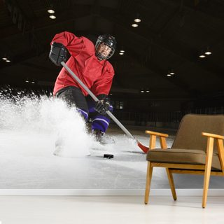 Woman Playing Ice Hockey