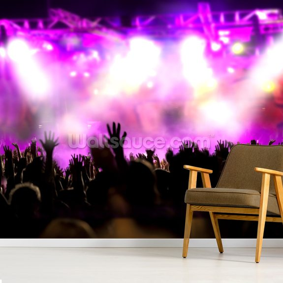 Music Concert wallpaper mural room setting