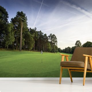 Pine Ridge Golf Club Wallpaper Wall Murals