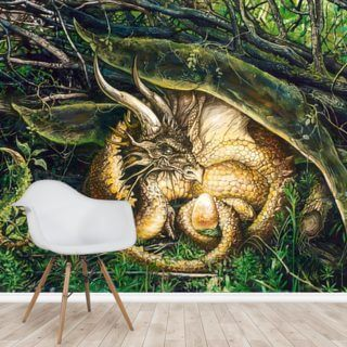 Dragon Nest Wallpaper Wall Murals