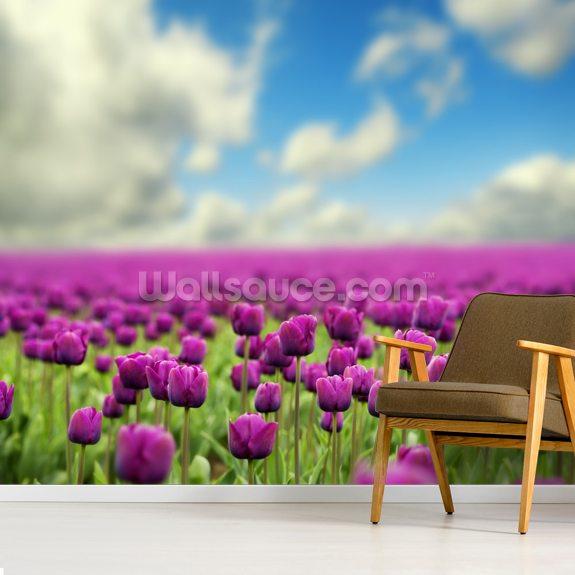 Spring Tulips Wallpaper Mural Room Setting