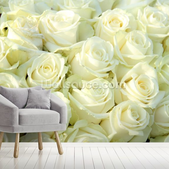 White Roses wall mural room setting