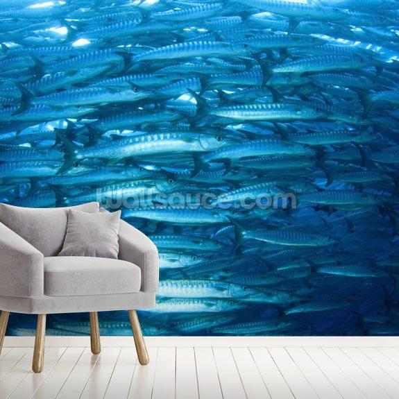 Barracuda Fish Wallpaper Mural Wallsauce Us
