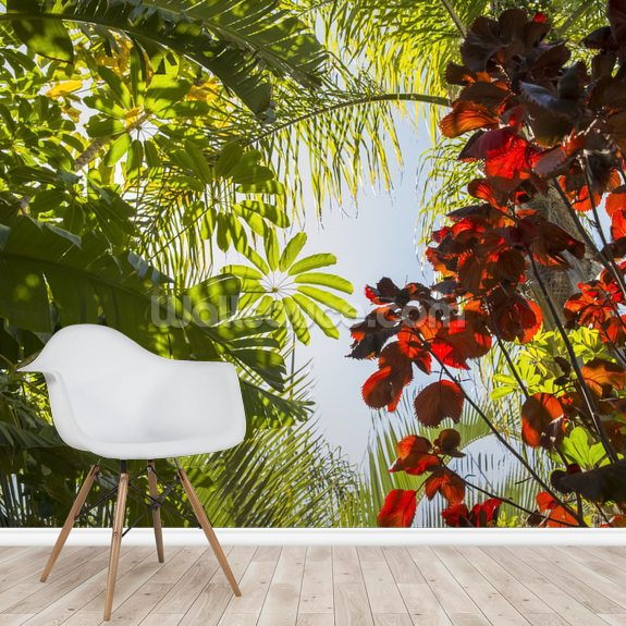 Jungle Canopy mural wallpaper room setting