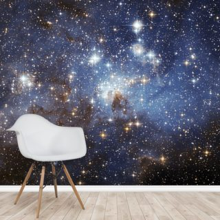 LH 95 in the Large Magellanic Cloud Wallpaper Wall Murals