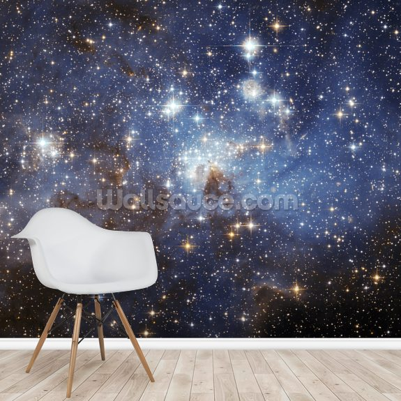 LH 95 in the Large Magellanic Cloud wallpaper mural room setting
