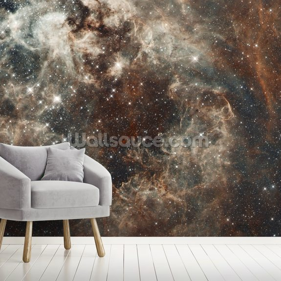 The Tarantula Nebula in the Large Magellanic Cloud wall mural room setting