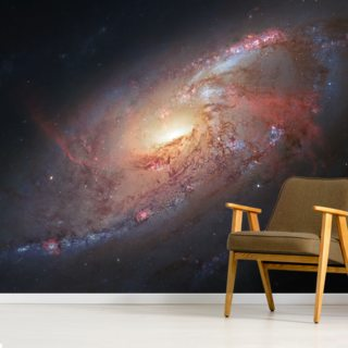 Astronomers Create a Cosmological Masterpiece Wallpaper Wall Murals