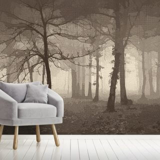 Delusion - Sepia Wallpaper Wall Murals