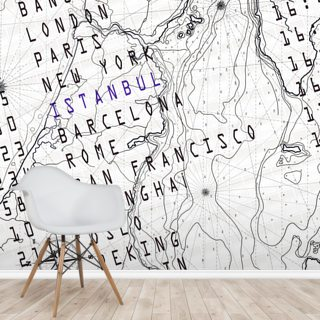 Fly Away Map Wallpaper Wall Murals