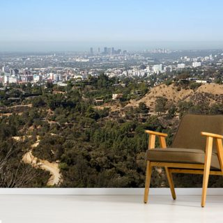 Los Angeles Wallpaper Wall Murals