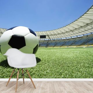 Football Soccer Ball Green Grass Pitch Wallpaper Wall Murals