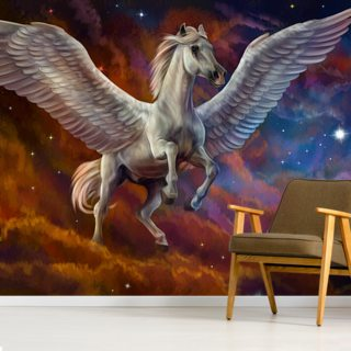 Pegasus and Starry Sky
