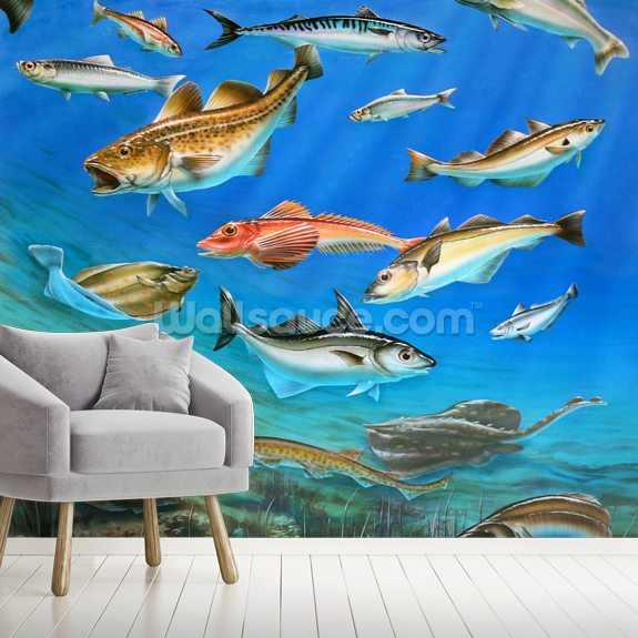 Sea Fish mural wallpaper room setting