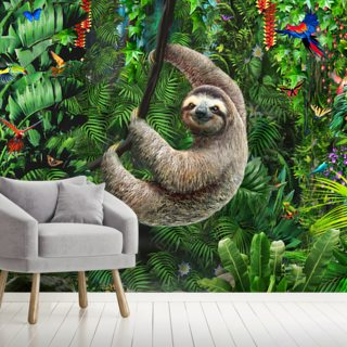 Sloth in Jungle