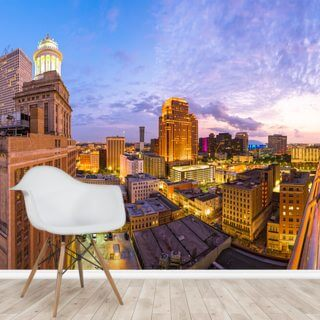 New Orleans Skyline Wallpaper Wall Murals