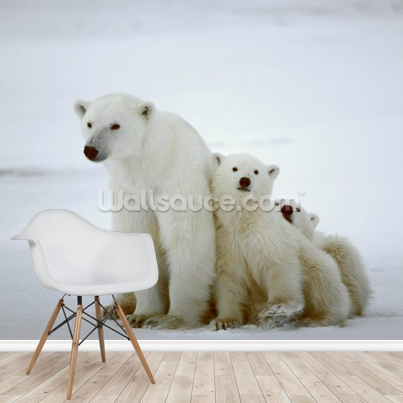 Polar Bear wall mural room setting