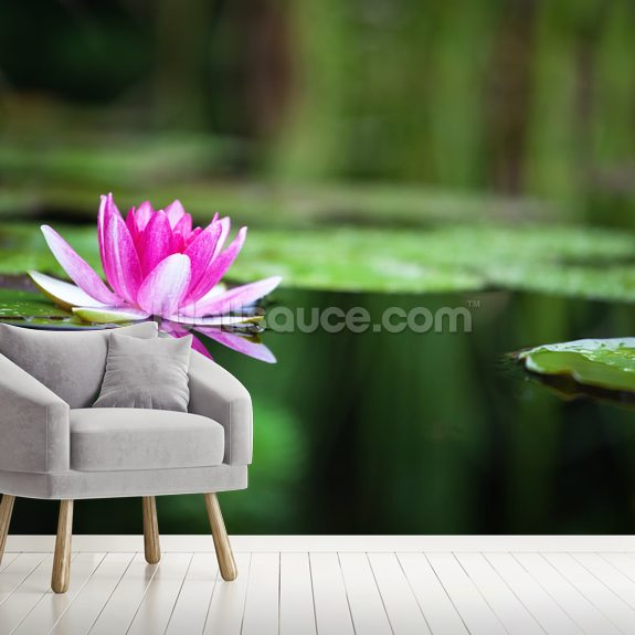 Pink Waterlily wall mural room setting