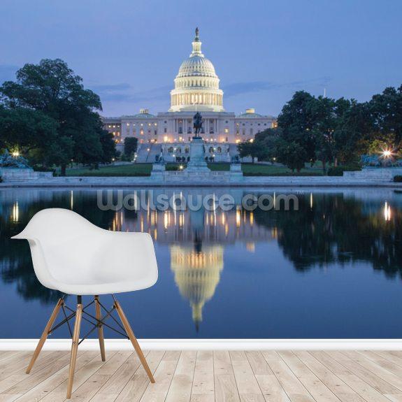 Washington D.C. - USA Capitol Building Mural