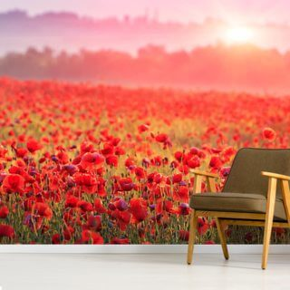 Red Poppy Sunrise