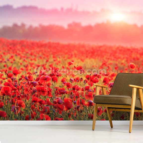 Red Poppy Sunrise wallpaper mural room setting