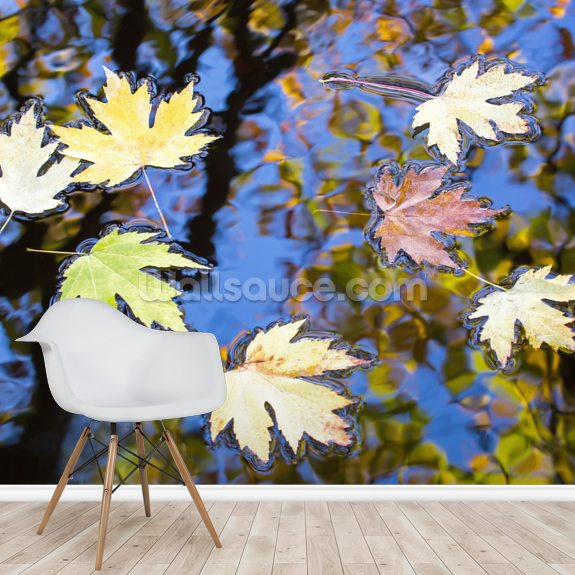 Maple Memories mural wallpaper room setting