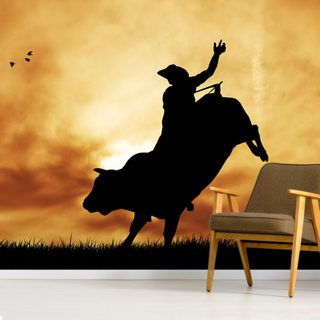 Bull rider at sunset