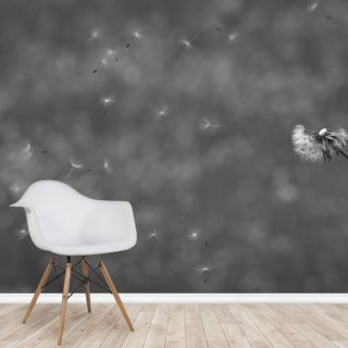 Dandelion in the Wind - Black and White Wallpaper Wall Murals