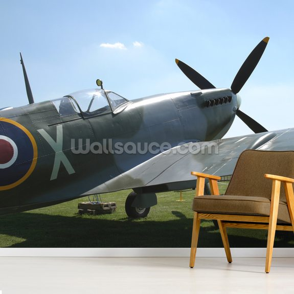 Spitfire wall mural room setting