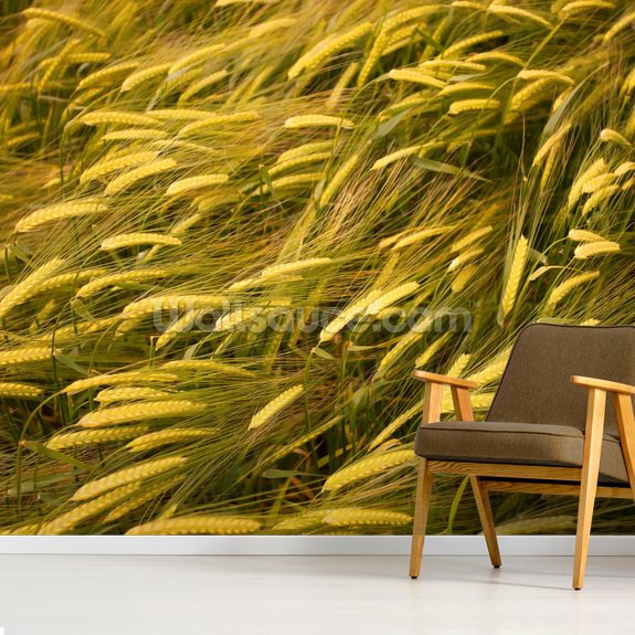 Wheat Ears wallpaper mural room setting