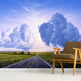 Buffalo Crossing Wallpaper Wall Murals
