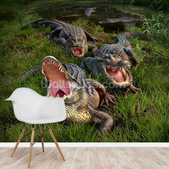 Alligators mural wallpaper room setting