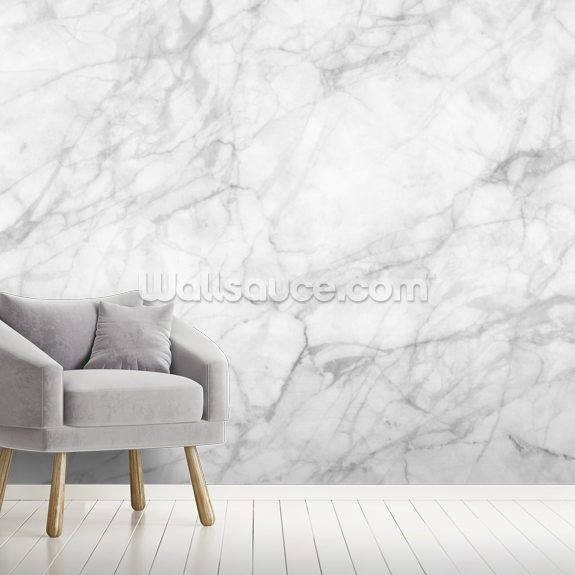 Exquisite Marble wall mural room setting