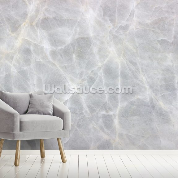 Light Grey Marble wall mural room setting