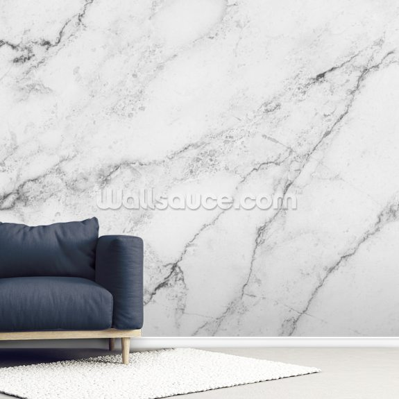 Black and White Marble wall mural room setting