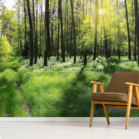 Green Forest Floor Wallpaper | Wallsauce EU