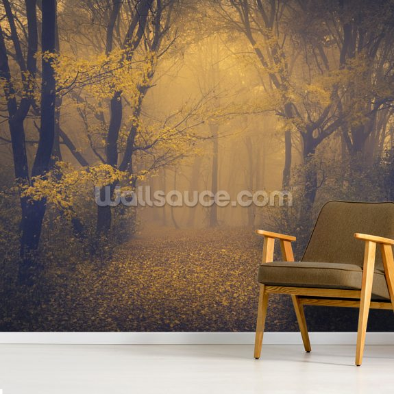 Mysterious Foggy Forest mural wallpaper room setting