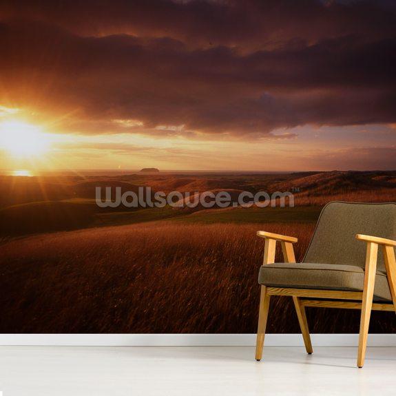 ballyliffin golf wall mural, ireland wallsauce usballyliffin, ireland wallpaper mural room setting