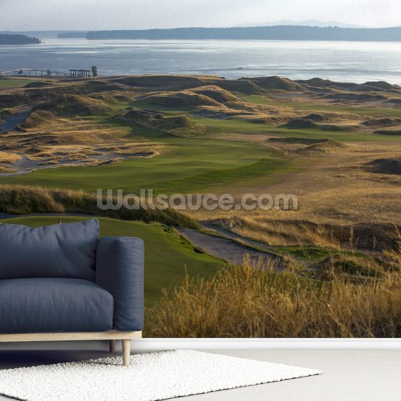Chambers Bay, USA wall mural room setting
