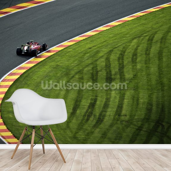 Kimi Raikkonen Belgium 2014 mural wallpaper room setting