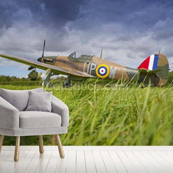 Battle of Britain Hurricane on the grass wall mural room setting