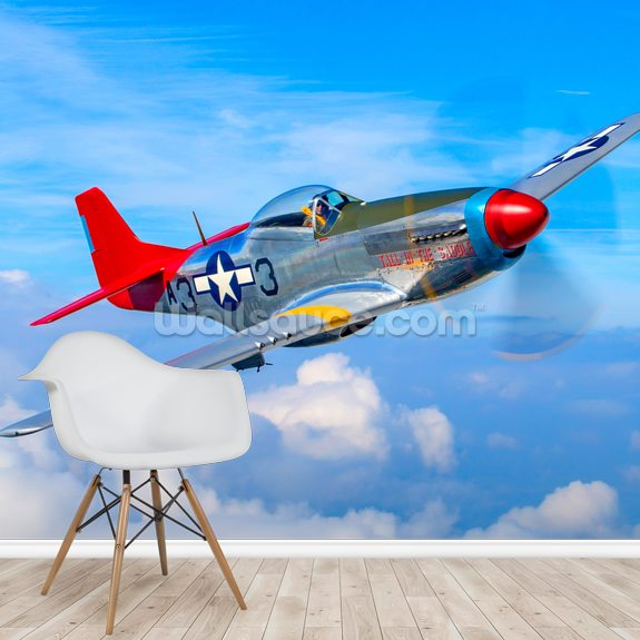 North American Mustang above the clouds mural wallpaper room setting