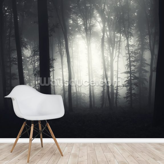 Light in the Dark wallpaper mural room setting
