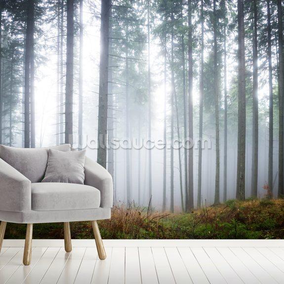 066a03fe3c96 Morning Forest Mist mural wallpaper room setting