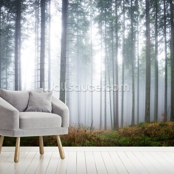 Morning Forest Mist mural wallpaper room setting