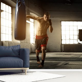 Boxing Wallpaper Wall Murals