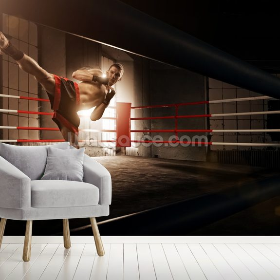 Kick Boxing wall mural room setting