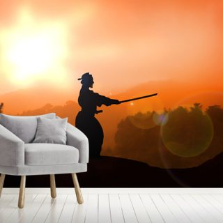 Kendo Wallpaper Wall Murals